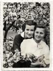 """macieknowak """"Panienki z dobrych domów -1936"""" (2011-02-02 22:32:02) komentarzy: 9, ostatni: piękne"""