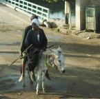 """asiasido """"egipska codzienność 1"""" (2011-02-03 12:37:19) komentarzy: 4, ostatni: Pięknie"""