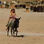 """asiasido """"egipska codzienność 6"""" (2011-02-07 22:02:35) komentarzy: 0, ostatni:"""