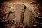 "maniekg ""Cmentarz"" (2011-02-15 00:50:59) komentarzy: 4, ostatni: zapomniane nagrobki db pokazane"