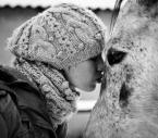 """Maskotka """"Miłość i inne nieszczęścia"""" (2011-02-22 19:28:24) komentarzy: 5, ostatni: miód w serduszku"""