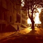 """weisfeldt """"poranne cienie. stambuł."""" (2011-02-28 23:31:36) komentarzy: 13, ostatni: cudnie :)"""