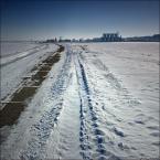 """ramumajana """"101"""" (2011-03-02 22:15:24) komentarzy: 1, ostatni: I ciekawą sprawą jest, że to samo miejsce, a kompozycyjnie lepiej wygląda w zimowej szacie :-)"""