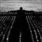 """shawrus """"chłopa cień..."""" (2011-03-09 17:57:53) komentarzy: 15, ostatni: taka duza a tak cicha  w pejzażu harmonijka"""