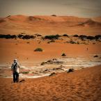 """aston martin """""""" (2011-03-10 22:35:28) komentarzy: 20, ostatni: ludziki dodają pustyni potęgi. Plany, klimat jak zawsze u Ciebie:)"""