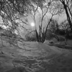 """irmi """""""" (2011-03-13 19:00:54) komentarzy: 3, ostatni: piękny klimat i te delikatne rozbłyski poprostu miodzio pozdr. :)"""