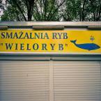 """miastokielce """"ul. Sienkiewicza Kielce"""" (2011-03-16 11:34:12) komentarzy: 12, ostatni: Może ie jest to fotografia na miarę PLFOTO, ale wbrew pozorom na takim zdjęciu idzie zarobić kilkadziesiąt złotych. I to nie jest żart..."""