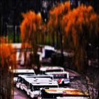 """enoa """"...autobusiki.../"""" (2011-04-06 03:05:07) komentarzy: 11, ostatni: ...Zbyszku ;)))..."""