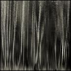 """BALTORO """"śnił się lasom las..."""" (2011-04-06 19:11:26) komentarzy: 12, ostatni: powtorze sie...niepokojaco piekny sen!!!"""