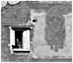 """myszok """"krasnolud"""" (2011-04-10 21:58:22) komentarzy: 8, ostatni: W sensie ...ten z kotem ;))"""