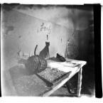 """paweljg """"***"""" (2011-04-19 20:17:19) komentarzy: 21, ostatni: namalowany kot, namalowana mysz.....cienie na dnie. bdb"""