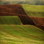 """asiasido """"słowackie dywany"""" (2011-04-19 21:47:15) komentarzy: 18, ostatni: niesamowite fale..."""