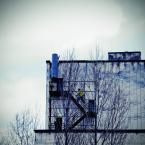 """Carlos Gustaffo """""""" (2011-04-21 16:32:46) komentarzy: 2, ostatni: tak znam ten budynek , ,,, dobre jest"""