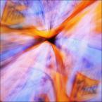 """enoa """"...specially for papajedi..."""" (2011-04-23 02:37:25) komentarzy: 76, ostatni: kapitalne... i kompozycja i paleta barw, to jest to."""