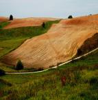"""asiasido """"pola Podlasia 3"""" (2011-04-26 16:26:29) komentarzy: 7, ostatni: przyjemne, przykuwa wzrok"""