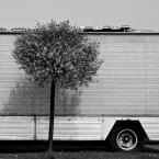 """krushon """""""" (2011-04-30 10:39:02) komentarzy: 15, ostatni: Piotr Smoliński[ 2011-05-22 16:30:27 ] Piotrze, to nie jest dach zza przyczepy. To jest przyczepa z taboru objazdowego wesołego miasteczka, a te """"przeszkadzajki"""" na dachu to jakieś neony składane na czas podróży. Dzięki:)"""