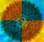 """carewna """"pomaluj mój świat..."""" (2011-05-12 20:38:01) komentarzy: 17, ostatni: ...''na żółto i na niebiesko'' ... :)))..."""