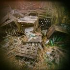 """LeszeK """""""" (2011-05-13 11:19:43) komentarzy: 4, ostatni: remont w domu, porządki w piwnicy"""