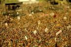 "nomaderro ""koncert"" (2011-05-15 09:50:37) komentarzy: 1, ostatni: Ciekawy efekt."