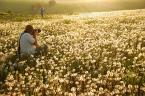 """asiasido """"jak fotograf fotografkę focił :)"""" (2011-05-24 19:38:18) komentarzy: 22, ostatni: fajne :)"""