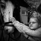 """OptykM """"Końskie pieszczoty"""" (2011-05-26 00:42:31) komentarzy: 10, ostatni: urocze"""
