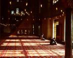 """weisfeldt """"w stronę m."""" (2011-06-02 00:10:20) komentarzy: 1, ostatni: cudne światło, dobre miejsce na medytację :)"""