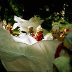 """love_ridden """"Tańcząca ze smokami"""" (2011-06-09 23:00:08) komentarzy: 8, ostatni: super."""