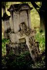 """Finiu """"Zapomniane Cmentarze Roztocza"""" (2011-06-25 13:08:02) komentarzy: 1, ostatni: miejsca ciszy..."""