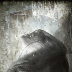 """chudzyy """""""" (2011-06-25 22:12:22) komentarzy: 9, ostatni: DELFIN....    .....fantastyczne"""