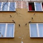 """miastokielce """"Ul. T. Kościuszki Kielce"""" (2011-06-26 22:49:36) komentarzy: 1, ostatni: Czad jak zawsze :)"""