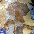 "Anavera ""parasolka"" (2011-07-01 23:32:12) komentarzy: 5, ostatni: Dobra seria..."