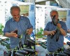 """JarekZ-68 """"... samo zdrowie ..."""" (2011-07-02 11:33:21) komentarzy: 11, ostatni: :))) czego to się człowiek o rodzimych kulinariach nie dowie przy okazji wystawienia fotki ;)"""