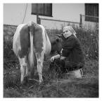 """rysiek57 """"Gażdzina z Witowa."""" (2011-07-03 22:05:31) komentarzy: 7, ostatni: Z życia wzięte. A krowa jaka czyściutka, fiu-fiu."""