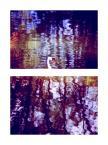 """Verie Astharoth """"efemeryczność"""" (2011-07-07 17:39:49) komentarzy: 10, ostatni: +++"""
