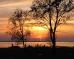 """opty49 """"Nad jeziorem Świtaź."""" (2011-07-11 21:13:37) komentarzy: 16, ostatni: drzewa + tło = nastrój , jedno przycięte ale nie zawsze mozna mieć wszystko :-)"""
