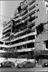 """ajsikel """"Belgrad"""" (2011-07-22 00:56:18) komentarzy: 6, ostatni: natura powoli robi swoje.."""