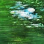 """enoa """"...malowane słońcem,piaskiem i zielenią... //"""" (2011-07-29 21:14:43) komentarzy: 8, ostatni: ... ;))) ..."""