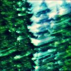 """enoa """"...malowane słońcem,piaskiem i zielenią... //"""" (2011-07-29 21:16:03) komentarzy: 21, ostatni: ...dybon - a komentarz do jedyneczki? ... :)))))))))))))))))))))))))))))))))"""