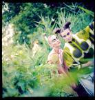 """aniut """"Dawno temu w trawie 2"""" (2011-08-08 14:29:55) komentarzy: 3, ostatni: -"""