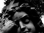 """Markus Scotophorus """""""" (2011-08-17 20:26:23) komentarzy: 9, ostatni: Świetny kadr"""