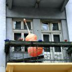 """miastokielce """"ul. Sienkiewicza Kielce"""" (2011-09-09 08:44:30) komentarzy: 0, ostatni:"""