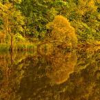 """Patulkaa """"Polska - jesiennie w złocie"""" (2011-09-20 00:49:20) komentarzy: 5, ostatni: +++"""