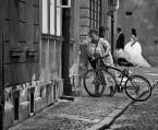 """sandiego """"bicycle"""" (2011-09-23 07:09:53) komentarzy: 18, ostatni: każdy pcha swój wózek"""