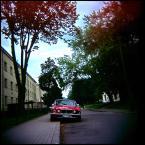 "lanolina ""* * *"" (2011-09-25 20:18:55) komentarzy: 4, ostatni: :)"