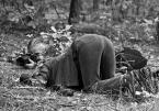 """sandiego """"z żabiej perspektywy"""" (2011-09-29 09:10:31) komentarzy: 56, ostatni: ..w lesie - pół biedy.. gorzej przy ruchliwej drodze :)) dziś przerabiałam temat :)"""