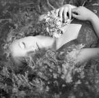"""fotoren """"wrzosowy sen"""" (2011-10-04 12:55:56) komentarzy: 12, ostatni: ...pięknie..."""