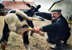 """Zbigniew Woźniak """"Cudak"""" (2011-10-04 19:43:11) komentarzy: 74, ostatni: czernobyl ?"""