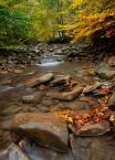 """marcinkesek """"jesień w pełni"""" (2011-10-09 20:00:20) komentarzy: 10, ostatni: ładnie"""