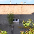 """miastokielce """"Ul. Wspólna Kielce"""" (2011-10-19 10:00:44) komentarzy: 2, ostatni: zaraza te brzozy"""