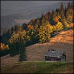 """xKolba """"..."""" (2011-10-29 20:50:55) komentarzy: 12, ostatni: bardzo piękny kadr, światło także"""